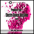 Producer Tool: Electro Dance Bassline Vol 6