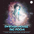 Swedish Big Room Vol 3