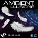 Ambient Illusions (Multi-Format)