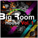 Big Room House Vol 1