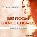 Big Room Dance Chords
