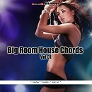Big Room House Chords Vol 1