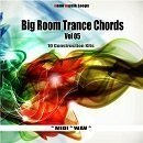 Big Room Trance Chords Vol 5