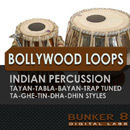 Bollywood Percussion Loops