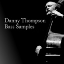 Danny Thompson: Double Bass