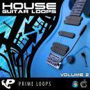 House Guitar Loops 2 (Multi-Format)
