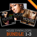House Synth Loops Bundle 1-3