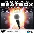Human Beatbox Samples Pro (Multi-Format)