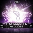Professional Melodies Vol 1