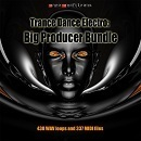 Trance Dance Electro: Big Producer Bundle