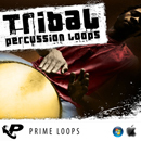 Tribal Percussion Loops (Multi Format)