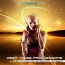 Deep House Progressions Vol 1