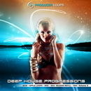 Deep House Progressions Vol 2