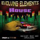 Evolving Elements: House