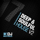 DJ Mixtools 17: Deep & Soulful House Vol 2